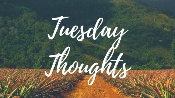 Tuesday Thoughts 001