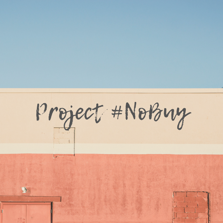 30 Days of Project #NoBuy